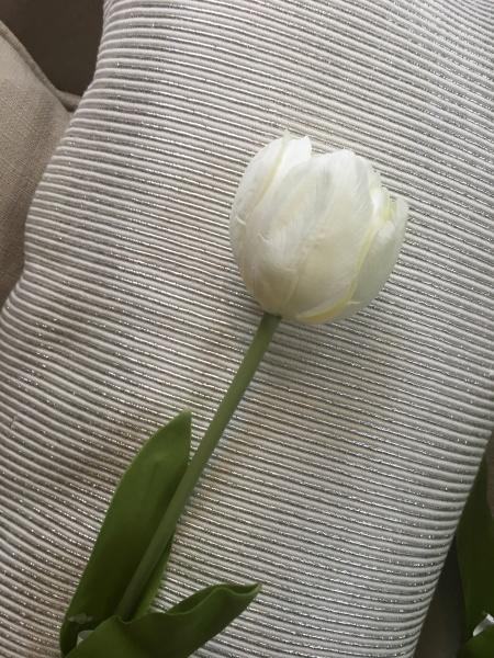 Tulipan, hvit - Paradiset Interi?r