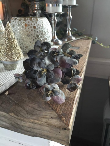 begonia kvist på lager 5 98 legg i handlekurv informasjon kvist ...
